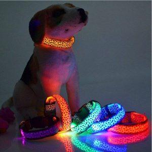 Leopard Style LED Dog Collar